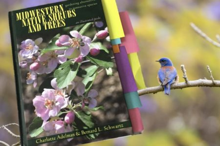 An inspiring and conscience-driven book for gardeners and nurseries